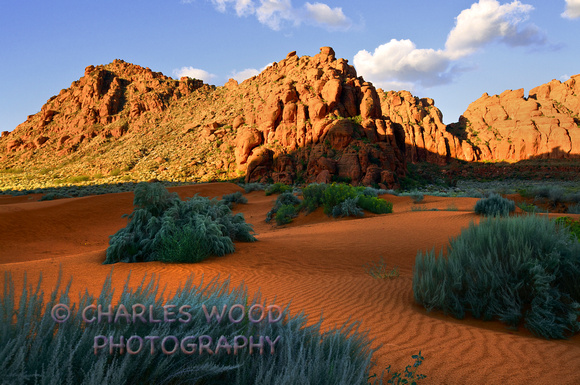 CHARLES WOOD PHOTOGRAPHY | NEW GALLERY ADDITIONS | SAND DUNES - SNOW ...